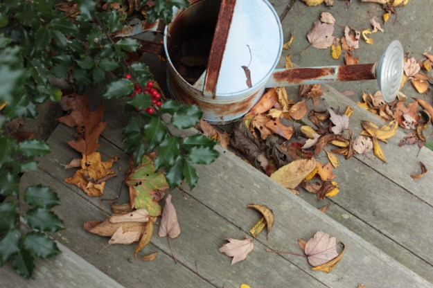 steps-leaves-holly-wateringcan