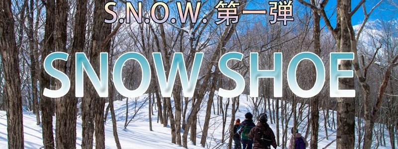 雪原アニマルウォッチングツアー(予約受付中!)