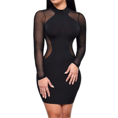 Bodycon See-Through Dress