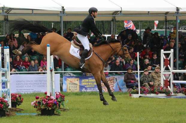 Surrey County Show 2014 - Alan Meeks (20)