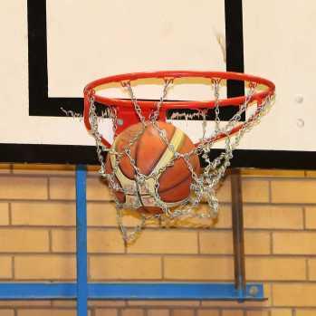Walking Basketball 4