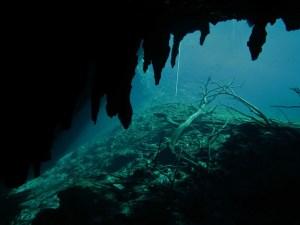 Cours de plongée caverne : premiers pas dans le monde de la plongée souterraine