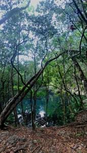 Cenote Angelita - Deep diving in Tulum, Mexico