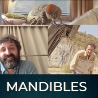Quentin Dupieux On Humanity Behind 'Mandibles' And Sequel Possibilities