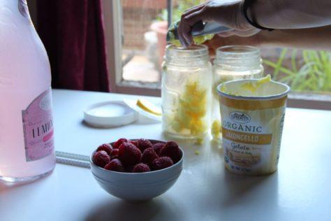 limoncello-pink-lemondate-float-sprouts-deepfriedfit3