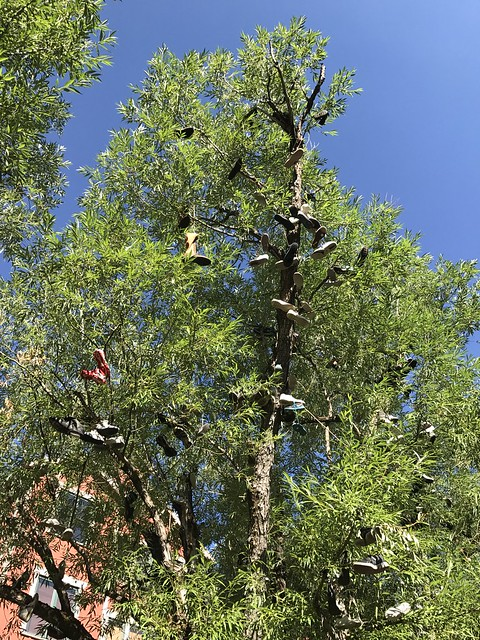 Shoe Tree, Marriott's Summit Watch Vacation Club Resort, Park City UT