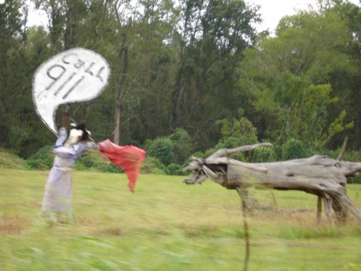Woman Being Chased by Bull at Jim Bird's Hay Creations, Forkland AL