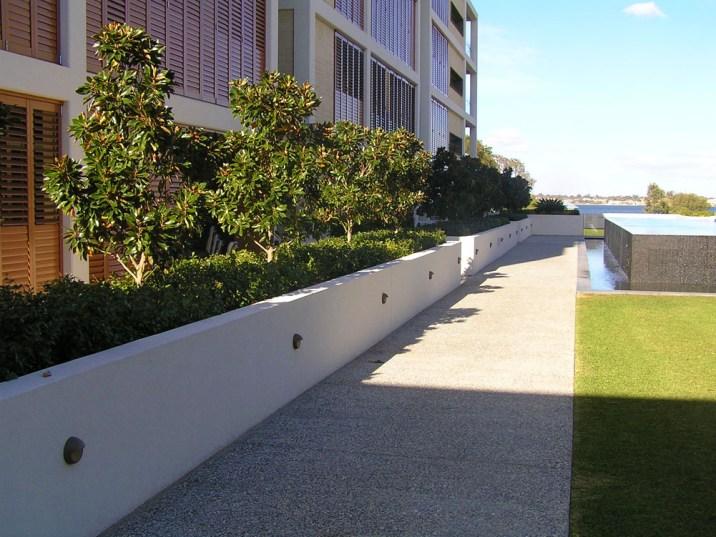 Esplanade magnolias