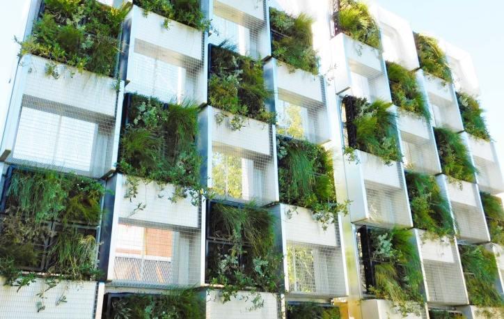 Northbridge Piazza vertical garden
