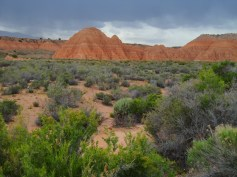 Cathedral Gorge 2015-05-22 (11) sm