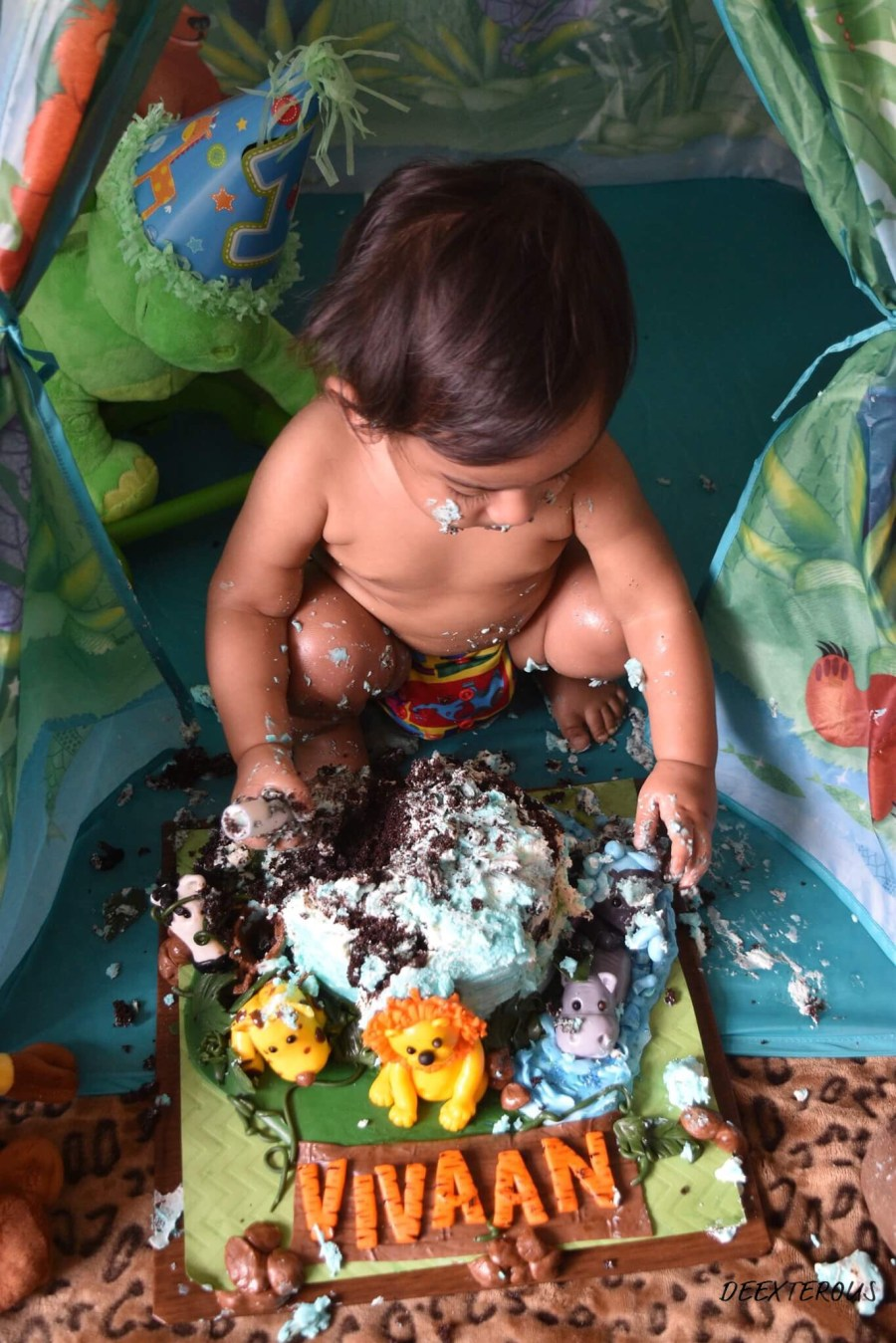 Baby loving it at Jungle theme cake smash indoor outdoor