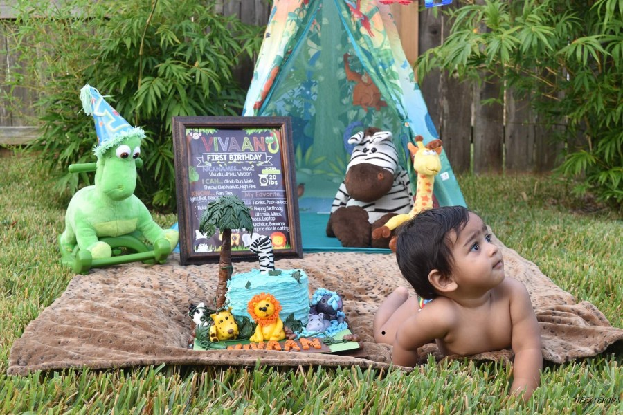 Total meltdown at the jungle theme outdoor cake smash