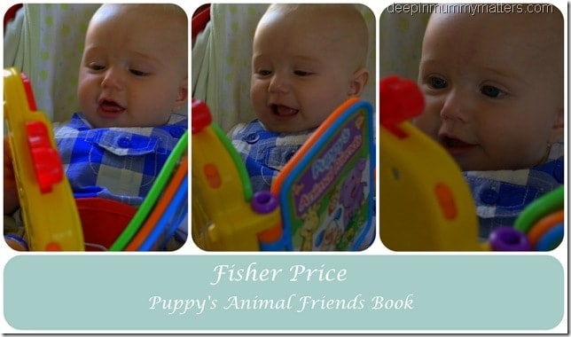 Fisher Price Animal Friends Book