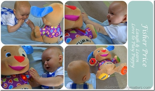 Fisher Price Love to Play Puppy