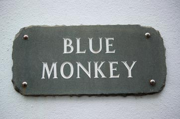 Blue Monkey sign