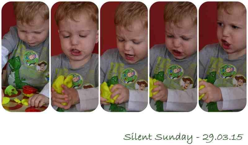 Silent Sunday