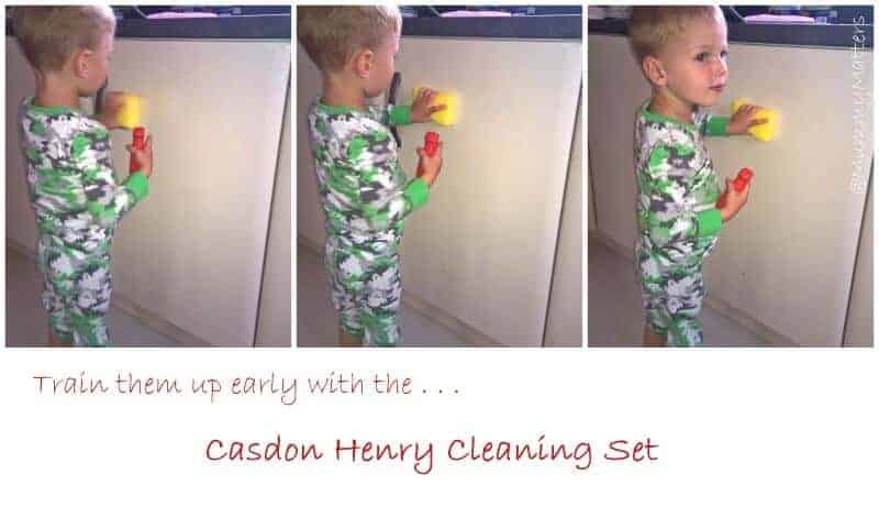 Casdon Henry Cleaning Set