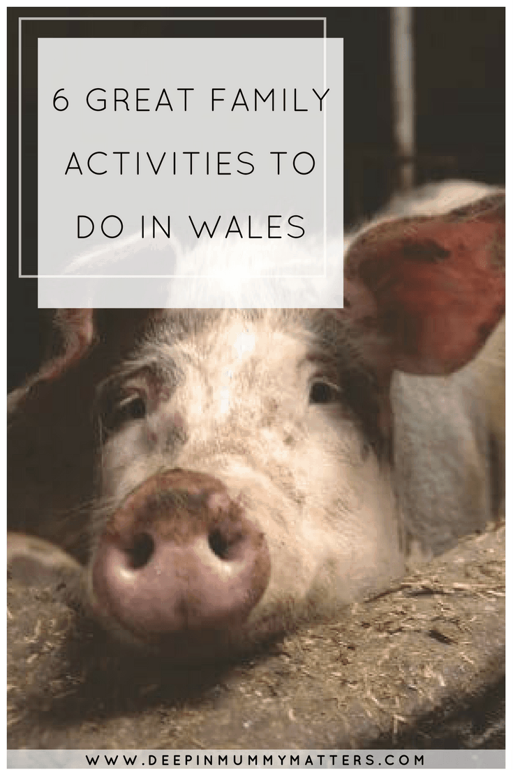 6 GREAT FAMILY ACTIVITIES TO DO IN WALES
