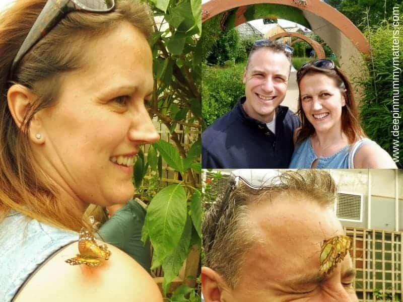 Butterfly Farm Stratford-upon-Avon