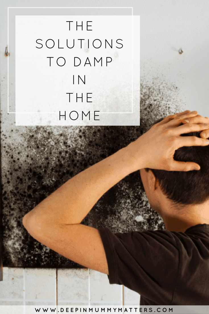 THE SOLUTIONS TO DAMP IN THE HOME