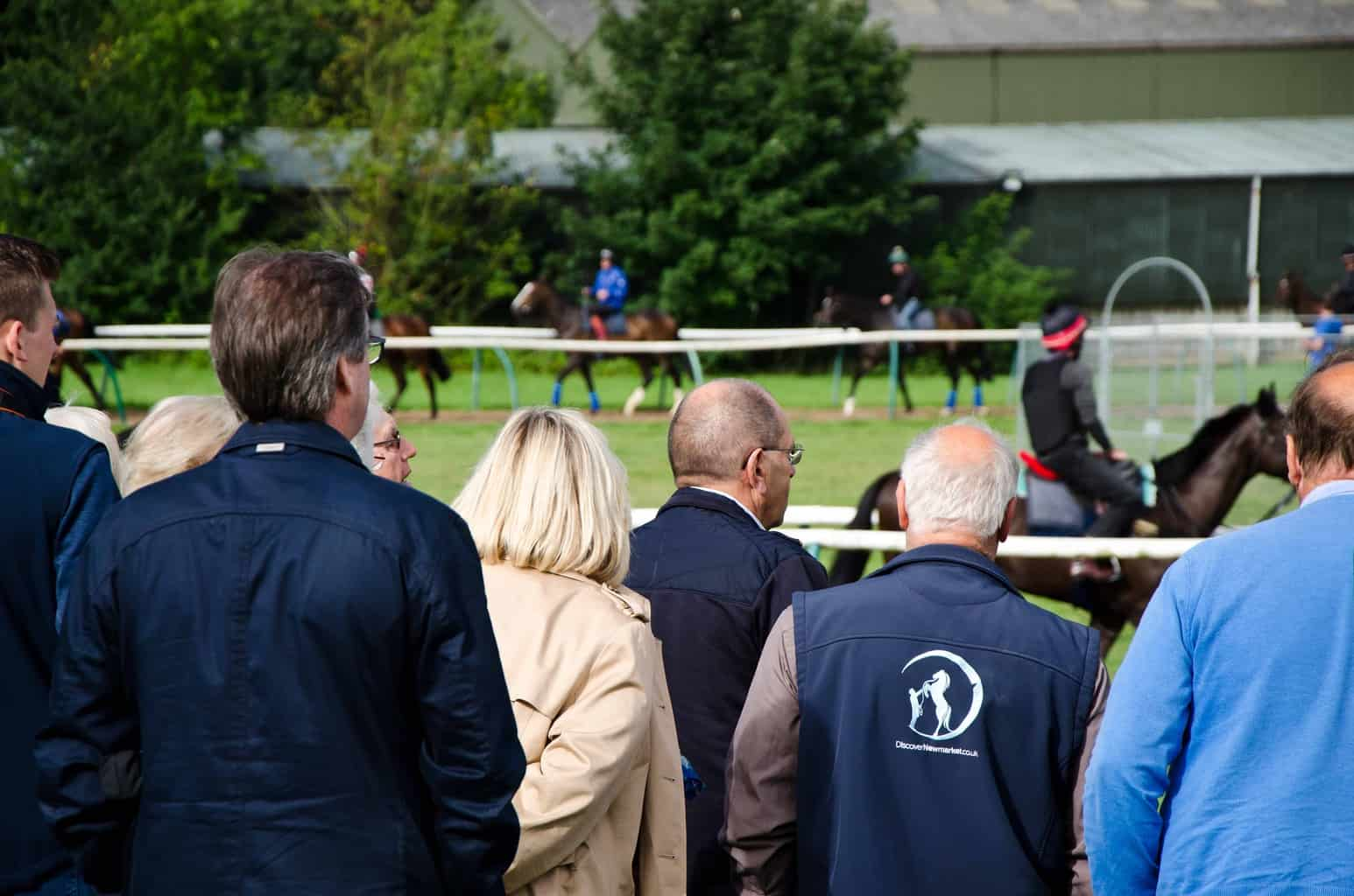 Discover Newmarket Tour