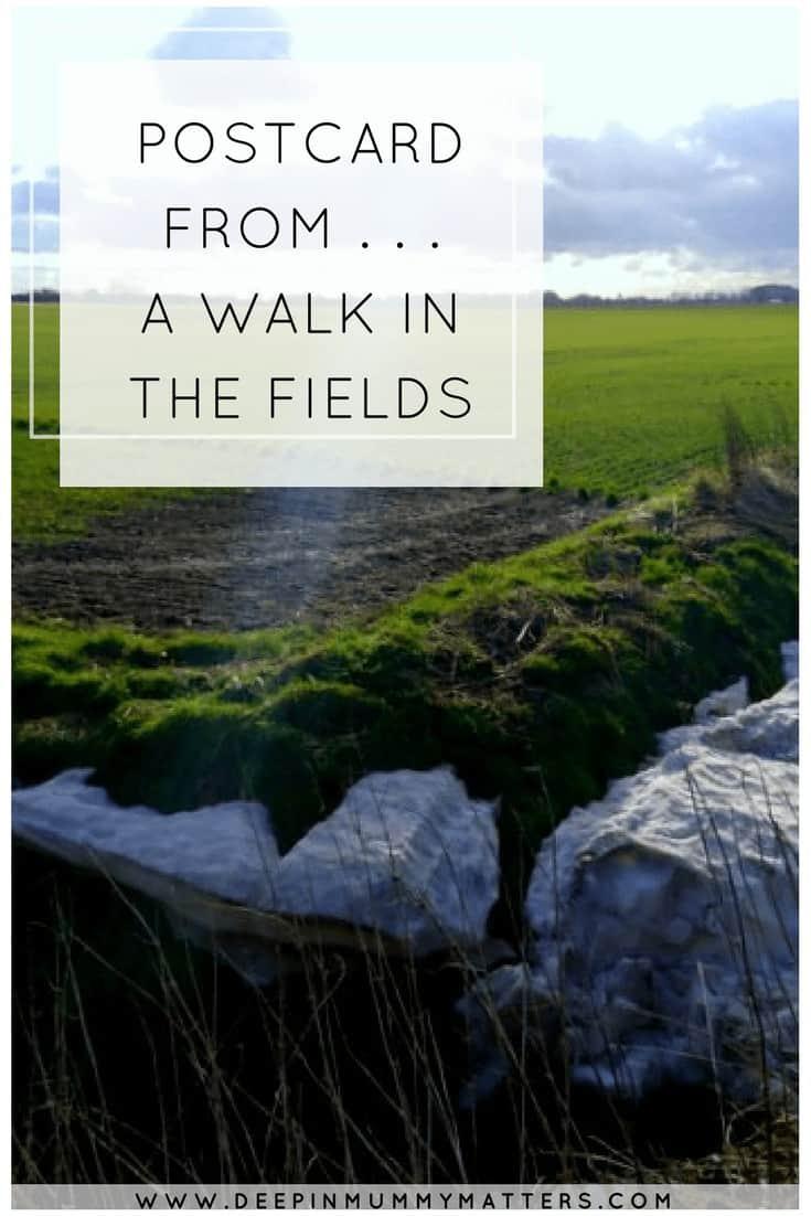 Postcard from . . . a walk in the fields
