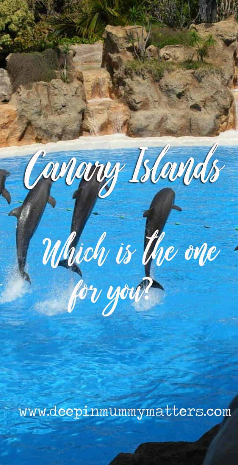 Canary Islands - which is the one for you?