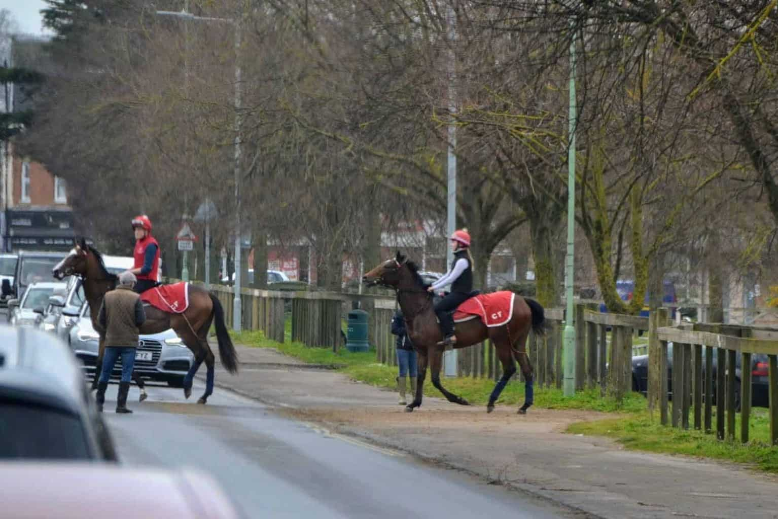 Discover Newmarket