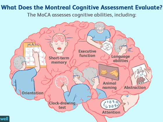 Cognitive Assessment Diagram