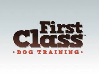 First Class Dog Training