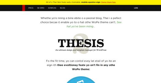 DIYthemes site on Chrome