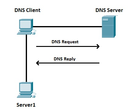 Changes to the DNS protocol will help curb DDoS abuse   Deep Packet