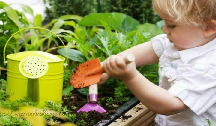 What Makes A Good Gardener?, gardener at heart, working in the dirt, pastime, caring person, gardening, planting, sowing seeds, harvesting, love being outdoors, digging in the dirt, garden trowel, child's garden tools, child in a garden