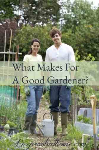 Do You Have What It Takes To Become A Good Gardener?, gardener at heart, working in the dirt, pastime, caring person, gardening, planting, sowing seeds, harvesting, love being outdoors, digging in the dirt, garden trowel, child's garden tools, child in a garden, young gardeners, gardening together