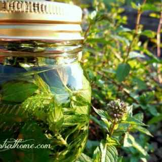 Two-Ingredient Mint Extract NO text