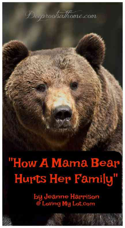 """""""How A Mama Bear Hurts Her Family"""" by Jeanne Harrison, analogy, mama swan, cygnets, grizzly bear, loud, obnoxious, family, care too much, Christian, protect, fragile, foundation of toothpicks, exhausting, mother, wife, heart, hands, worry, concern, love, joy, affection, fear, emotional capacity, husband,burden, protective, controlling, short-circuit, teaching to trust Jesus, heartache, suffering, abide in Christ, Psalm 46: 1-2, woman, fix it, assurance, house built on sand, Solid Rock, love, selfish,"""