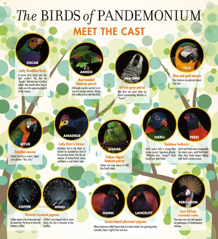 birds-of-pandemonium2