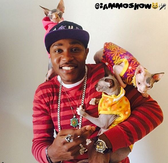 Moshow with his Sphynx sidekicks: 'I'm just a cat man trying to save the world.'