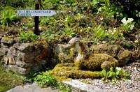 burrows farm gardens - 30