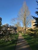 Oxford March 2017 - 128