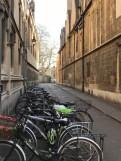 Oxford March 2017 - 94