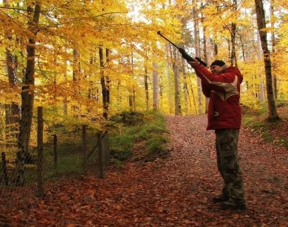 best deer hunting times ohio