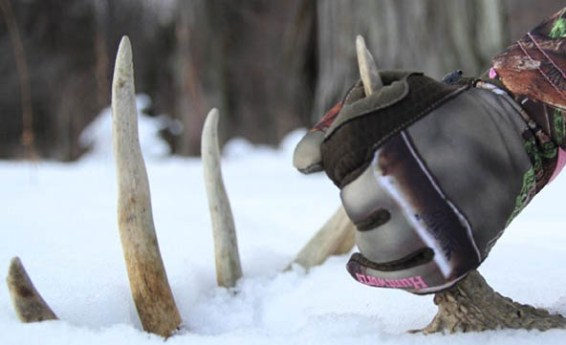 cold-hunting-gloves