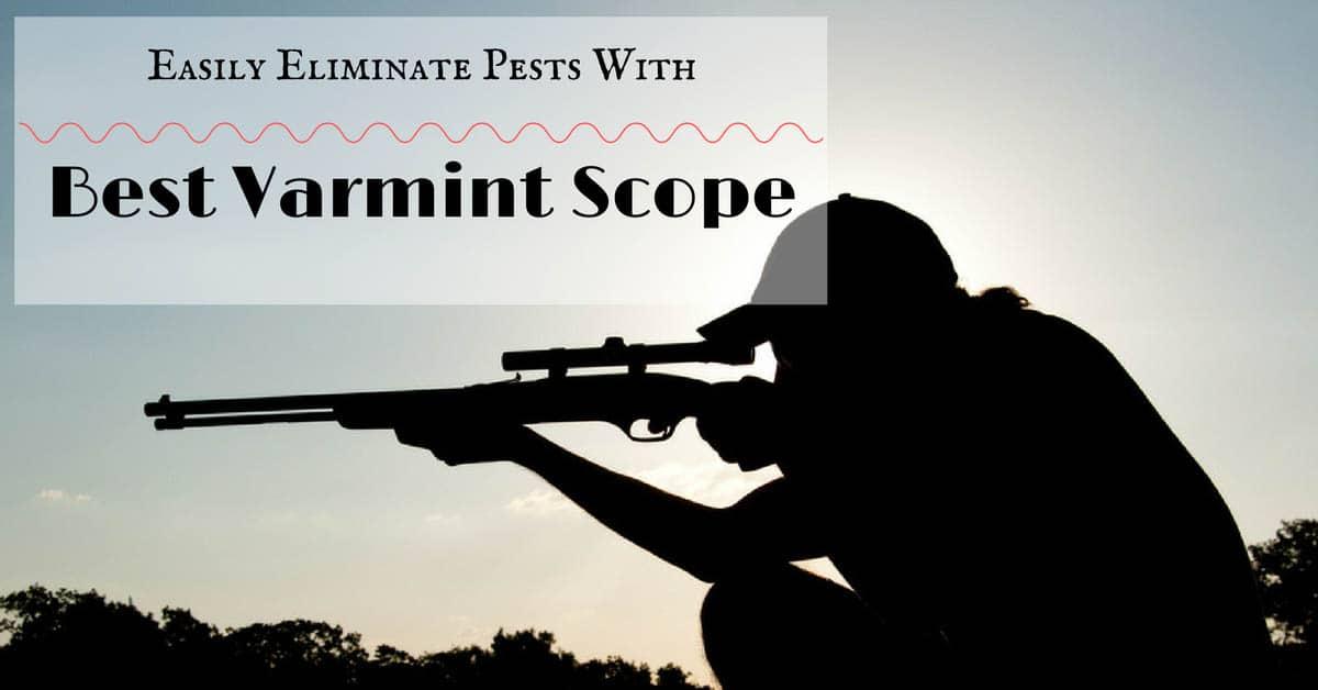 Best Varmint scope