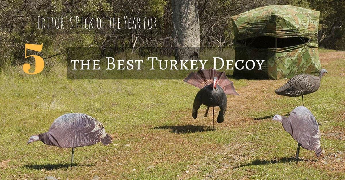 Best Turkey Decoy