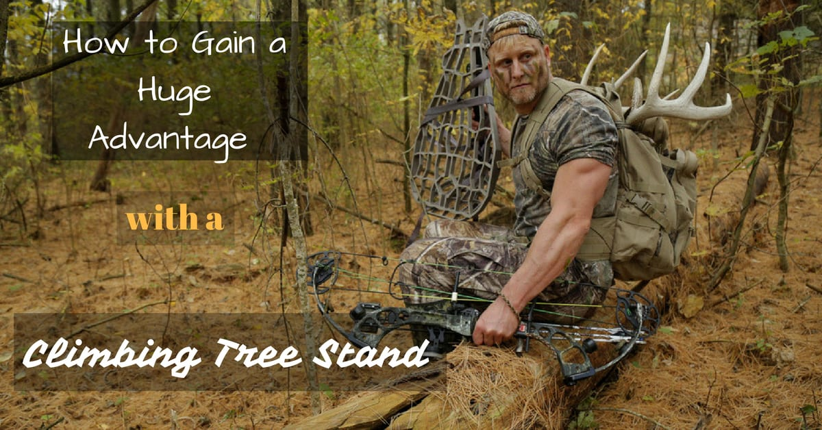 How To Gain A Huge Advantage With A Climbing Tree Stand
