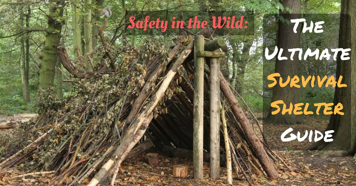 Safety In The Wild  The Ultimate Survival Shelter Guide
