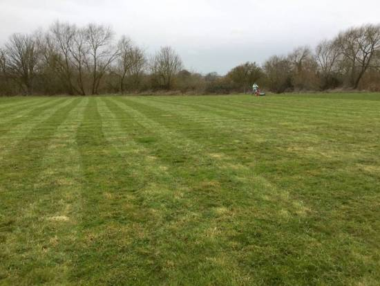 Our first cut had to be done by hand.