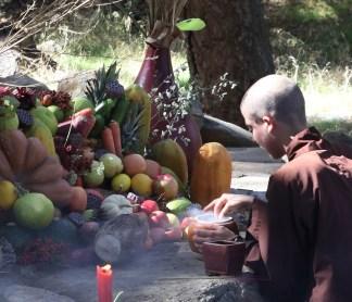 Fruit Altar in the Oaks