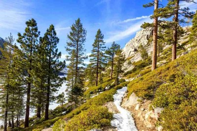 Print of Mountain Path Near Echo Lake Photo